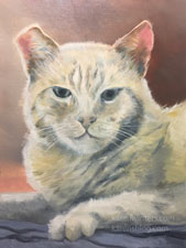 Tiger cat ginger tomcat oil painting pet portrait