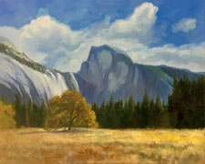 Yosemite Morning Meadow with Half Dome 16 x 20 oil painting