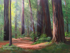 Grove of the Giants Redwood Oil Painting 18 x 24 inches Northern California