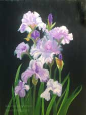 Standing Tall Lavender orchid and white iris bouquet botanical