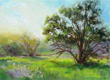 Oak in the meadow Malibu Creek State Park California impressionist oil painting spring art for sale karen winters