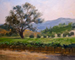 Paso Robles Vineyard Oak oil painting