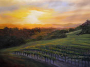 Paso Robles Vineyard Sunset Highway 46 Grapevines oil painting