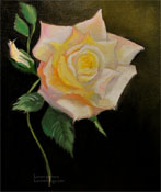 Peace Rose oil painting sold