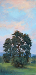 Reaching for the Sunset California Oak painting