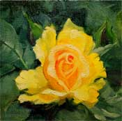 Yellow Rose miniature oil painting