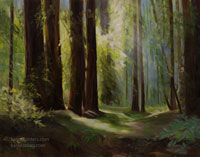 The Light in the Forest - California Redwoods Forest Grove Landscape Oil Painting